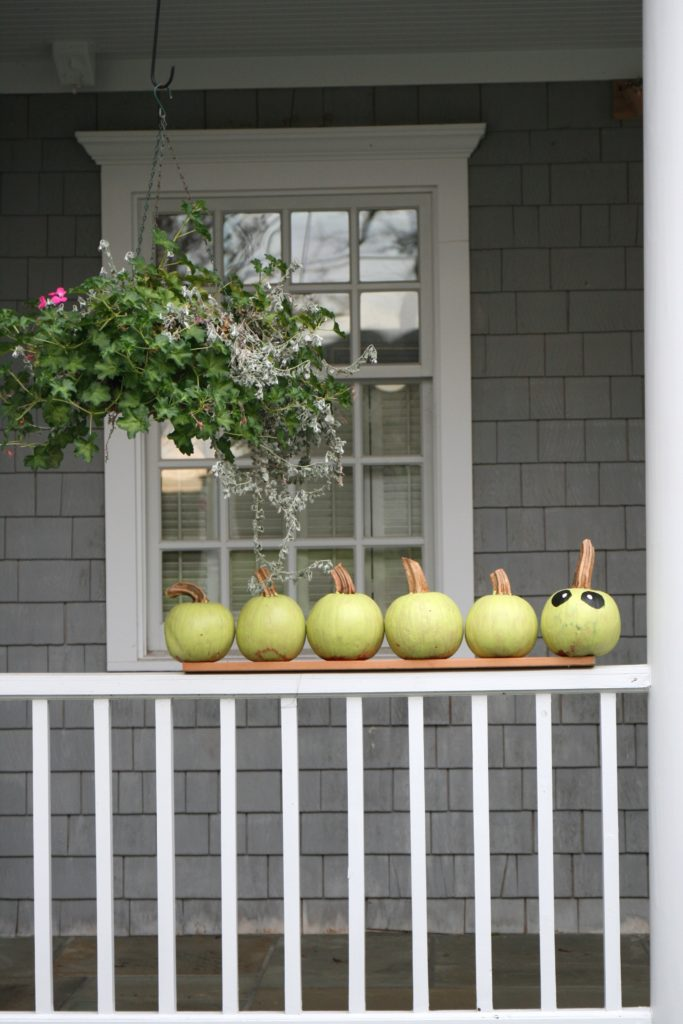 A simple gathering of pumpkins creates an outdoor vignette.